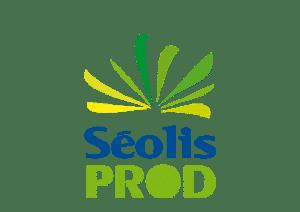 case_seolis_prod_3